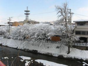 1月9日宮川